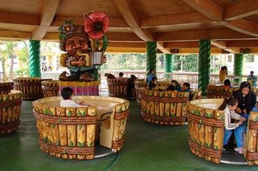麗寶樂園-探索樂園簡介-陸上樂園簡介魔法風琴師